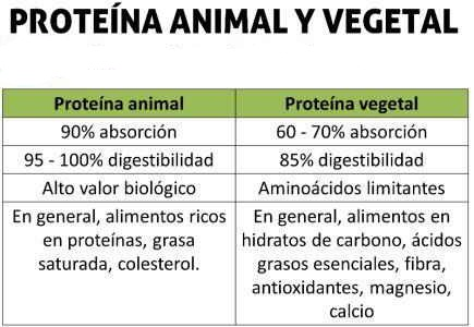 proteina-animal-vegetal-diferencias