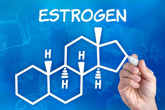 Power-Up-15-Foods-that-Naturally-Boost-Estrogen